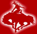 Cowboy-Moving-&-Storage-Inc logos