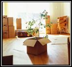 Elite-Moving-and-Storage-image3