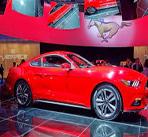 Mustang-Moving-image2